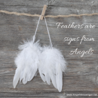 feathers-are-signs-from-angels-300x300
